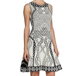 DVF Fit and Flare Chain Dress *read description*